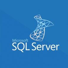 SQLSvrEntCore 2019 OLP 2Lic NL Gov CoreLic Qlfd